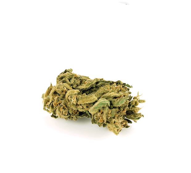 https://pithia.gr/wp-content/uploads/2019/11/cannabisshowcase.png